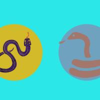 Sjelens helbredelse; Demoniske slanger