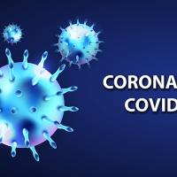 Corona 19